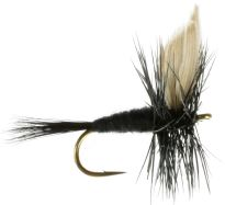 Black Gnat Dry Flies